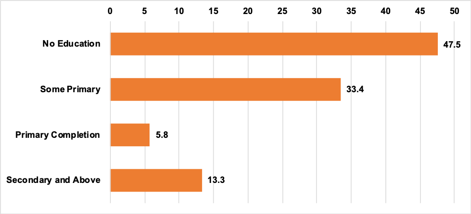 Bar chart showing the level of education for primary caregivers
